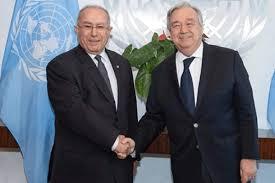 صورة الأمين العام للأمم المتحدة يدعو إلى بذل الجهود لتحقيق انتقال ديمقراطي في الجزائر