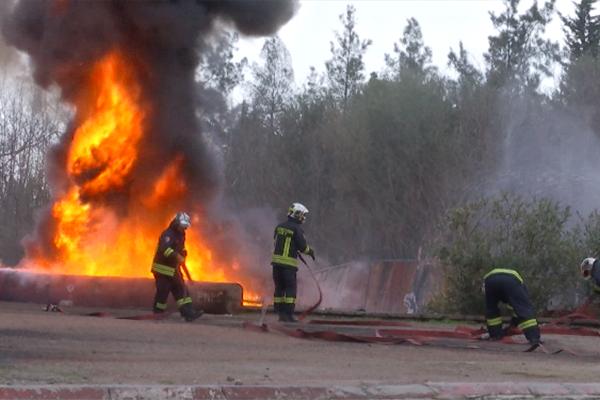 صورة فتح تحقيقات أمنية لتحديد المتسببين في حرائق الغابات