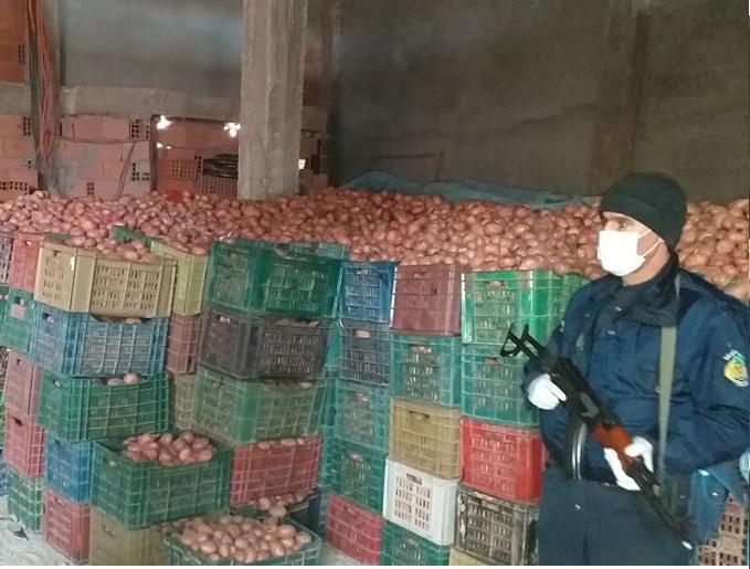 صورة حجز أكثر من 257 قنطار من البطاطا مهيئة للإتجار بها بطريقة المضاربة في الأسعار بالأغواط