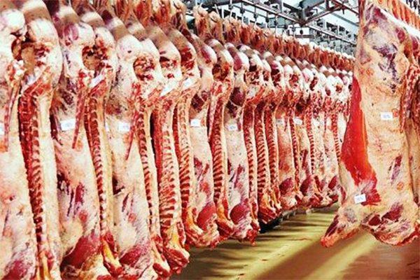 صورة دعوة لإنشاء فضاءات بديلة للموالين والتجار لكبح المضاربة في اللحوم الحمراء