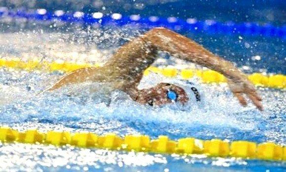 """صورة رئيس الاتحادية الجزائرية للسباحة: """"من المحتمل إلغاء بقية منافسات الموسم"""""""