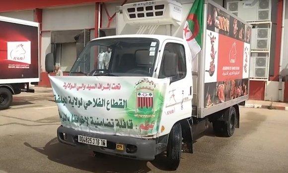 صورة موالو الجلفة يتبرعون بزهاء 200 رأس من الأغنام لمواطني البليدة