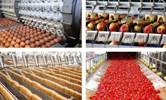 صورة ورقلة: آفاق واعدة لتطوير قطاع الصناعات الزراعية الغذائية