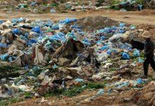 صورة ندوة افتراضية حول تثمين النفايات العضوية الأربعاء بالجزائر