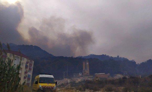 صورة حرائق غابات قوراية بولاية تيبازة:  توقيف 19 شخصا مشتبه تورطهم في قضية إضرام النيران