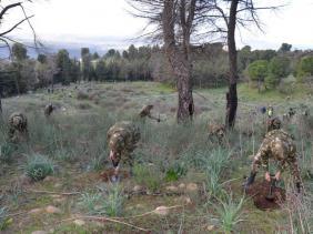 صورة أفراد الجيش الوطني الشعبي يشاركون في حملة للتشجير بغابة جبل الوحش بقسنطينة