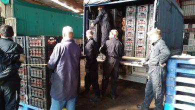 صورة غليزان :  الشروع في تسويق أزيد من 480 طن من البطاطا الموسمية