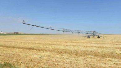 صورة ازدياد خسائر المحاصيل ثلاث مرات