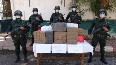 صورة وزارة الدفاع: توقيف 25 تاجر مخدرات وحجز أكثر من 13 قنطارا من المخدرات