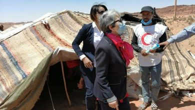 صورة البيض: الهلال الأحمر  يوزع طرود غذائية وخيم على البدو الرحل