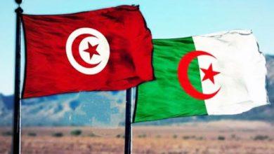 صورة إجلاء تونسيين من الجزائر… الاثنين آخر أجل للتسجيل