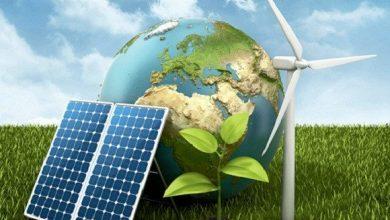 """صورة بمناسبة اليوم العالمي للبيئة: إطلاق أول حاضنة للمقاولاتية """"الخضراء"""" بالجزائر"""