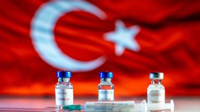 صورة تركيا تعلن عن تصنيع لقاح مضاد لكورونا
