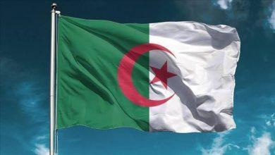 صورة إنتخاب الجزائر عضوا في مجلس إدارة منظمة العمل الدولية
