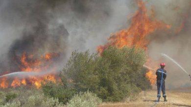 صورة جيجل… عملية إخماد الحرائق متواصلة