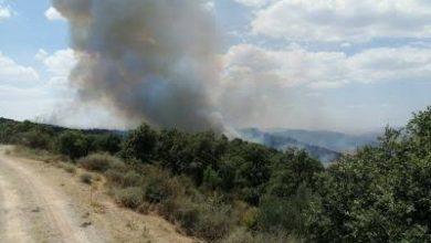 صورة إخماد الحرائق المندلعة على مستوى غابات ولاية قالمة