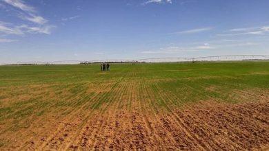 صورة قواعد جديدة تتعلق باستصلاح الأراضي في اطار الامتياز