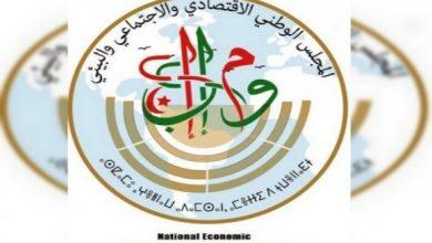 صورة المجلس الوطني الاقتصادي والاجتماعي والبيئي:  لقاء حول الصناعة الصيدلانية وبراءات الاختراع اليوم