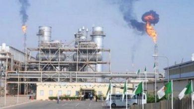 """صورة محمد عرقاب:  الجزائر تدرس مع زبائنها وسائل """"التأقلم مع التغييرات الحالية"""" التي تعرفها سوق الغاز"""