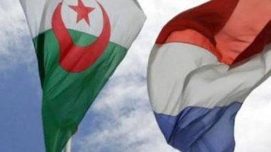 """صورة الاتحاد الوطني للصحفيين والاعلاميين الجزائريين يندد بإشادة وكالة الأنباء الفرنسية بحركة """"الماك"""" الارهابية"""