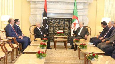 صورة قوجيل يجدد التأكيد على تضامن الجزائر ووقوفها الدائم إلى جانب الشعب الليبي