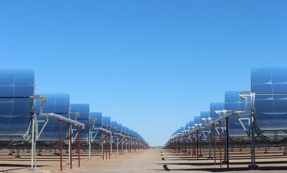 Photo de L'Algérie intéressée par la coopération avec le consortium DII Desert Energy
