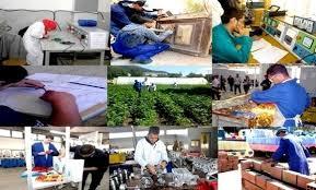 Photo de Oran : la formation par apprentissage pour se rapprocher davantage des entreprises économiques